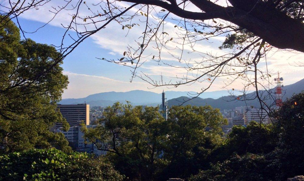 Chương trình giao lưu văn hóa hè của Trường Đai học Tokushima, Nhật Bản